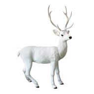 WHITE DEER - BLANCH